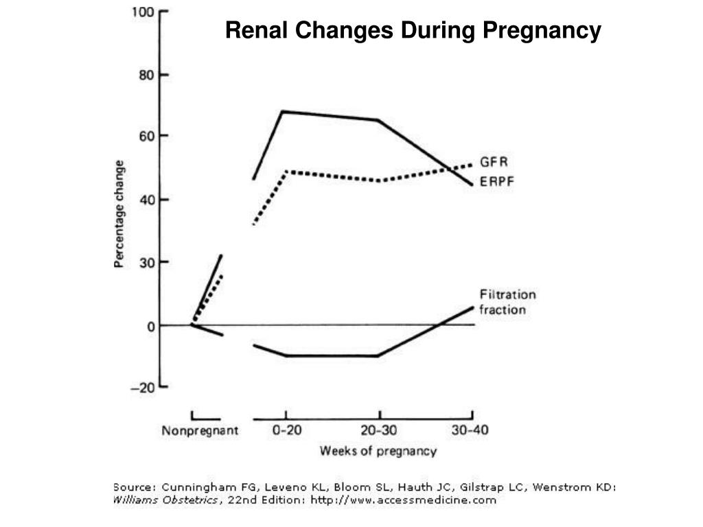 Renal Changes During Pregnancy