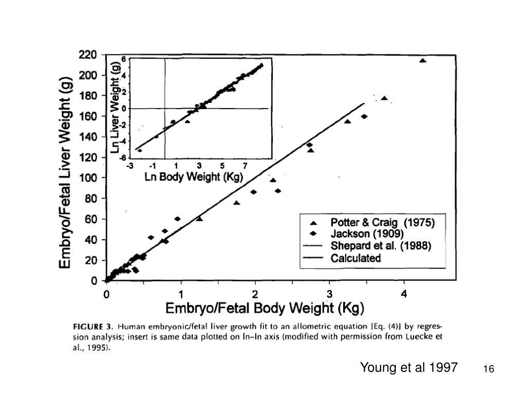 Young et al 1997