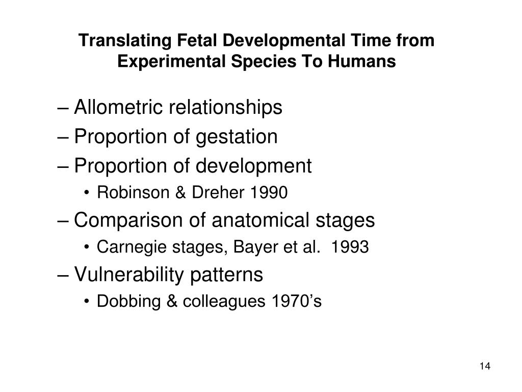 Translating Fetal Developmental Time from Experimental Species To Humans