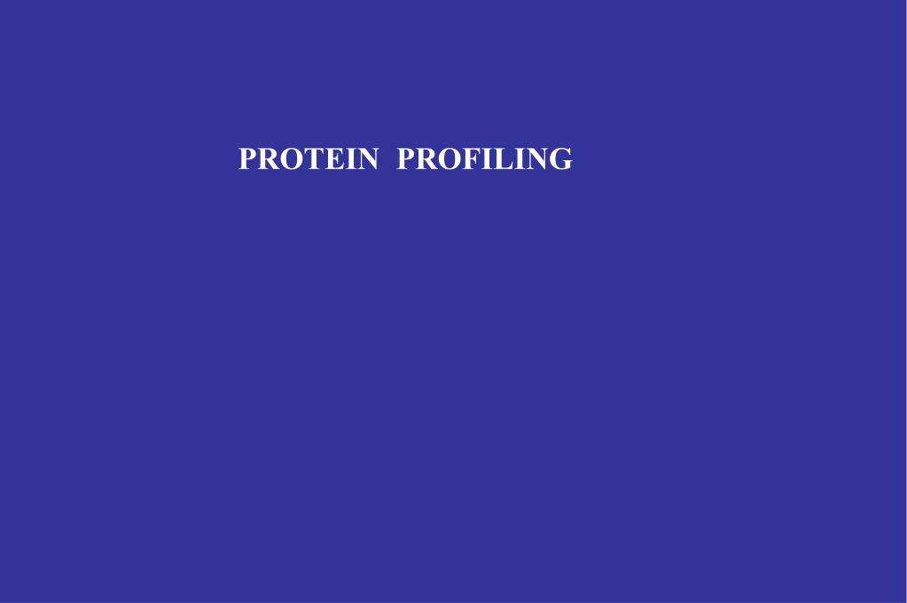 PROTEIN  PROFILING