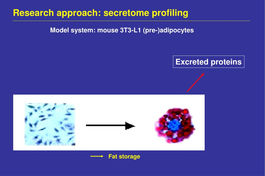 Research approach: secretome profiling