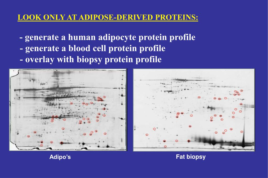 LOOK ONLY AT ADIPOSE-DERIVED PROTEINS: