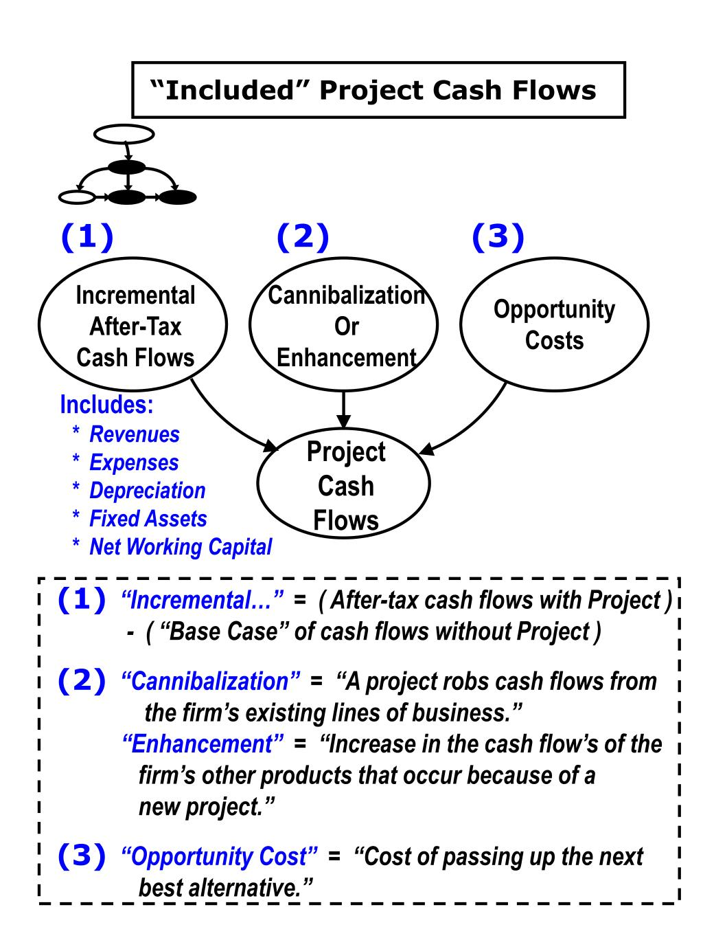 """Included"" Project Cash Flows"