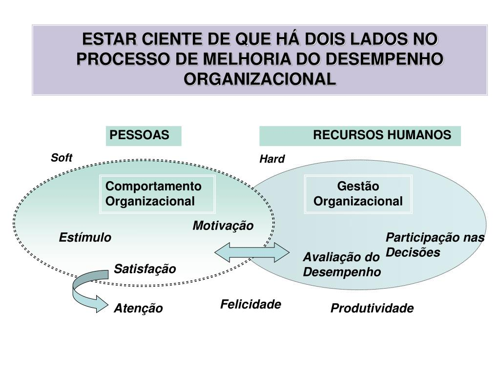 ESTAR CIENTE DE QUE HÁ DOIS LADOS NO PROCESSO DE MELHORIA DO DESEMPENHO ORGANIZACIONAL