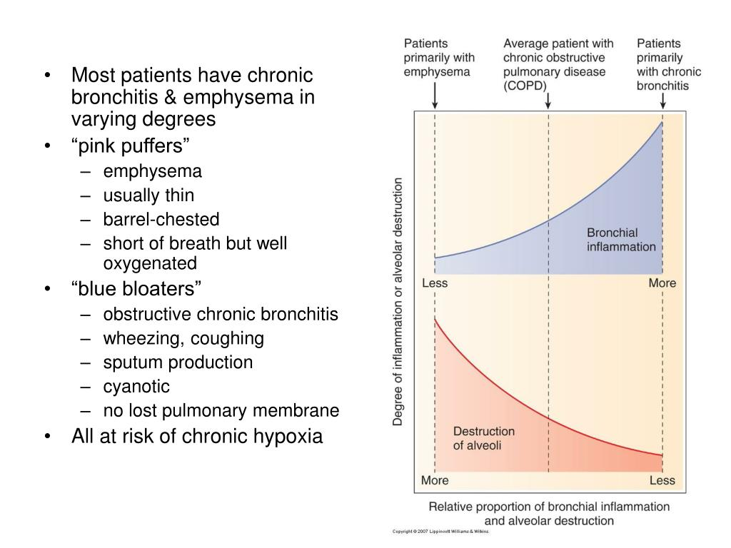 Most patients have chronic bronchitis & emphysema in varying degrees