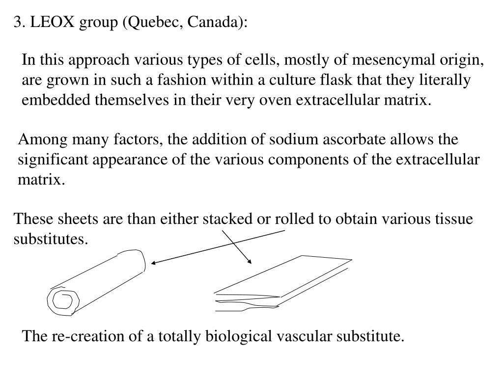 3. LEOX group (Quebec, Canada):