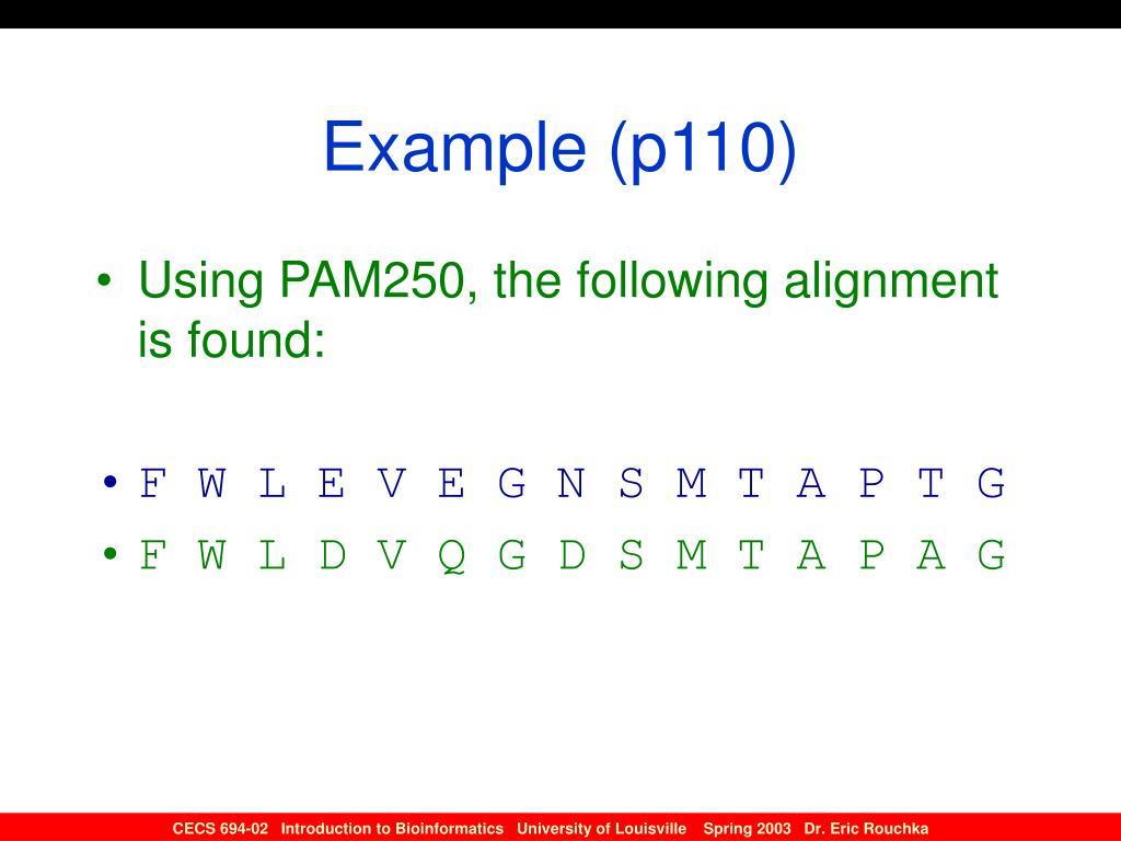 Example (p110)