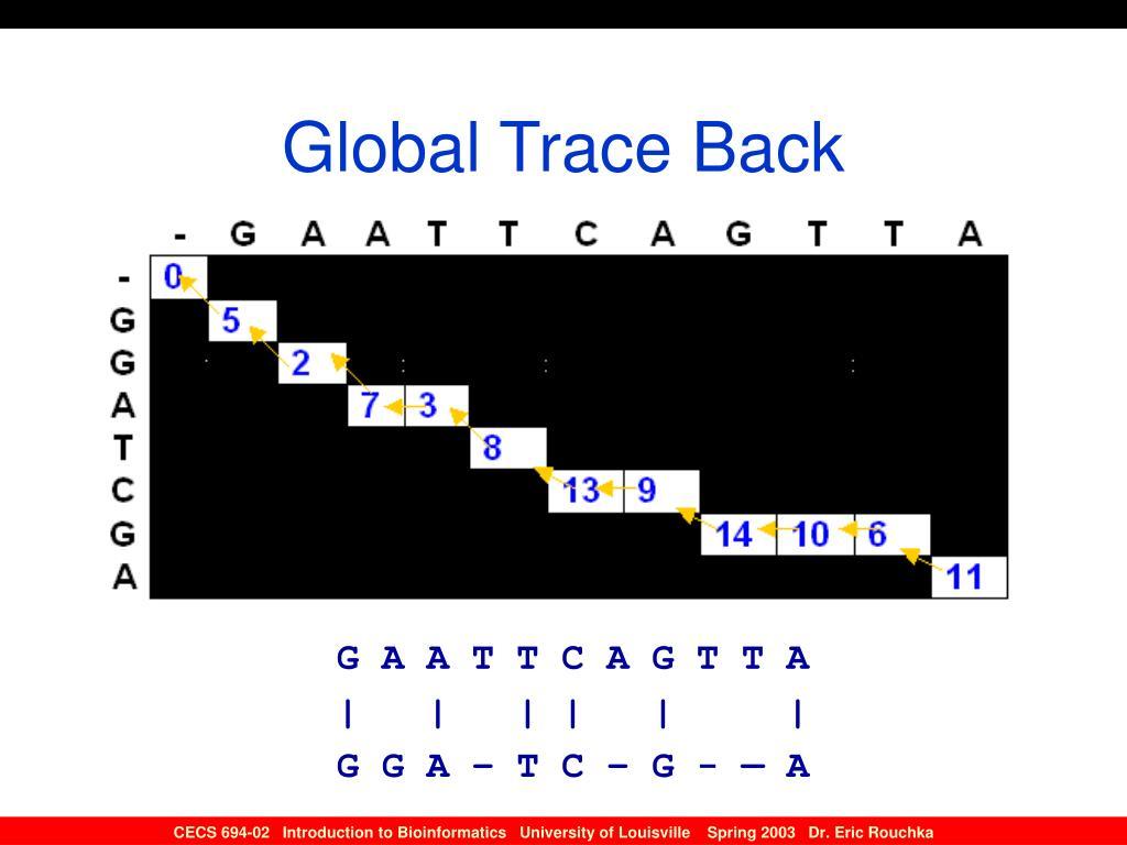 Global Trace Back