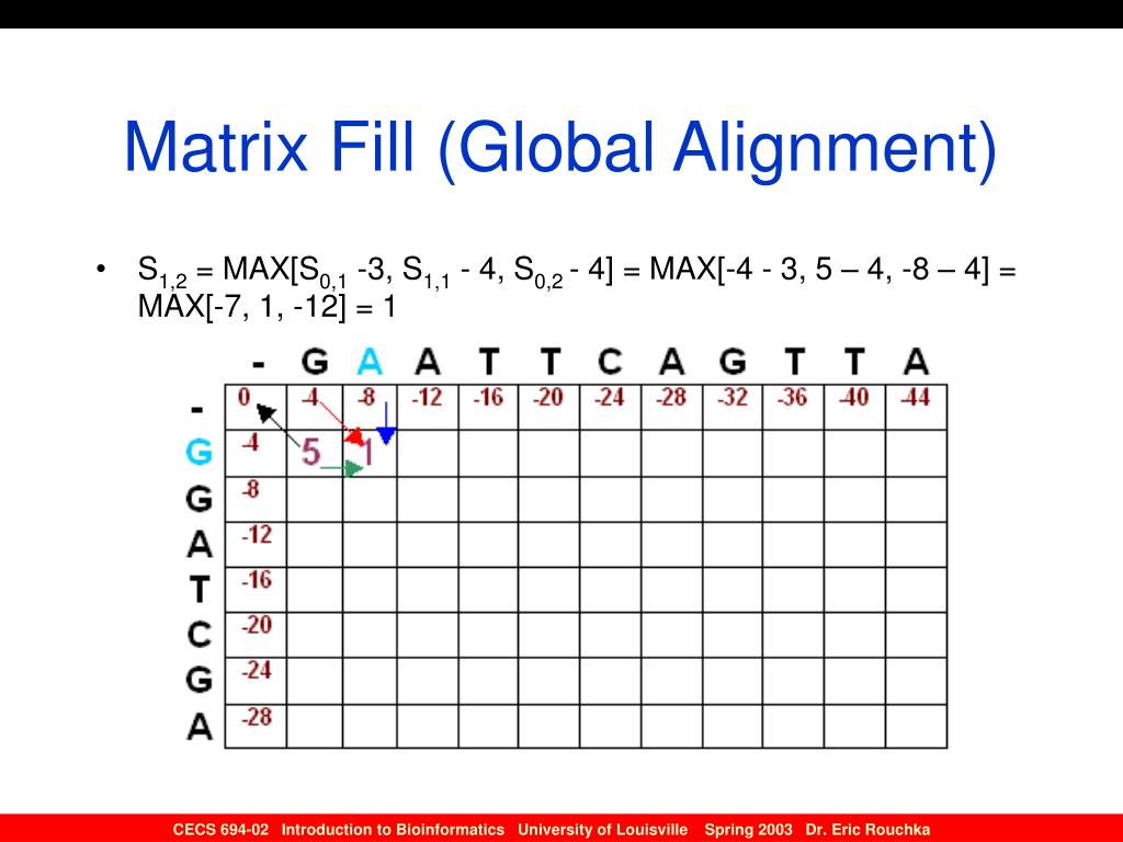 Matrix Fill (Global Alignment)