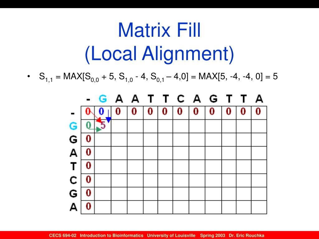 Matrix Fill