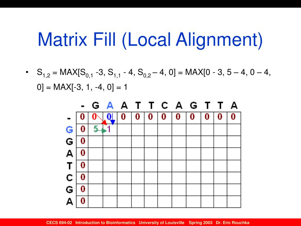 Matrix Fill (Local Alignment)