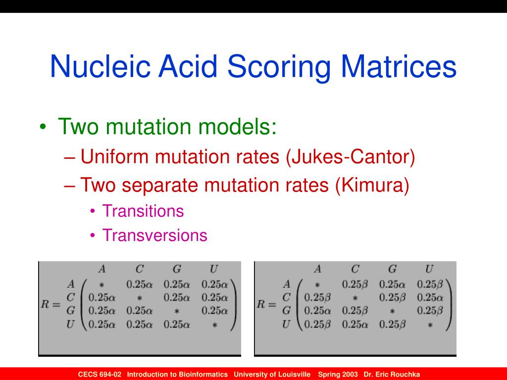 Nucleic Acid Scoring Matrices