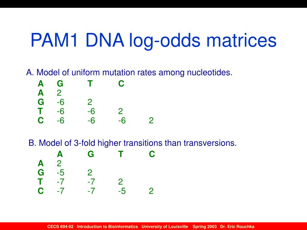 PAM1 DNA log-odds matrices