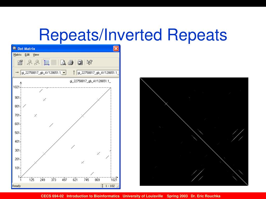 Repeats/Inverted Repeats