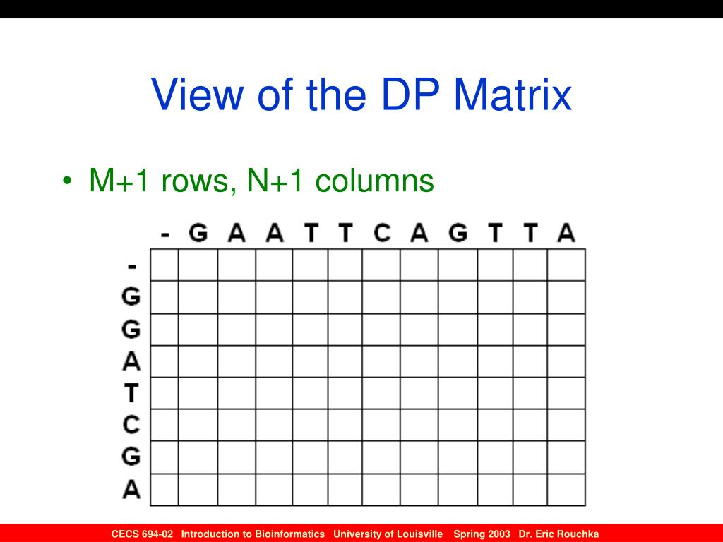 View of the DP Matrix