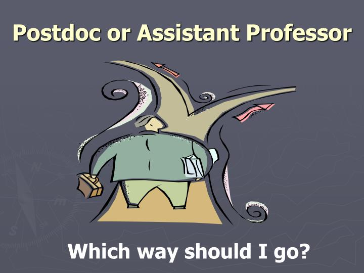 Postdoc or Assistant Professor