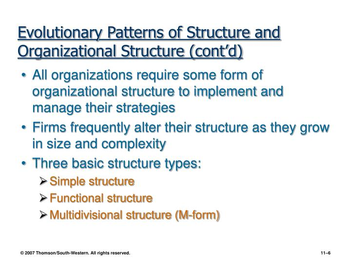 Evolutionary Patterns of Structure and Organizational Structure (cont'd)