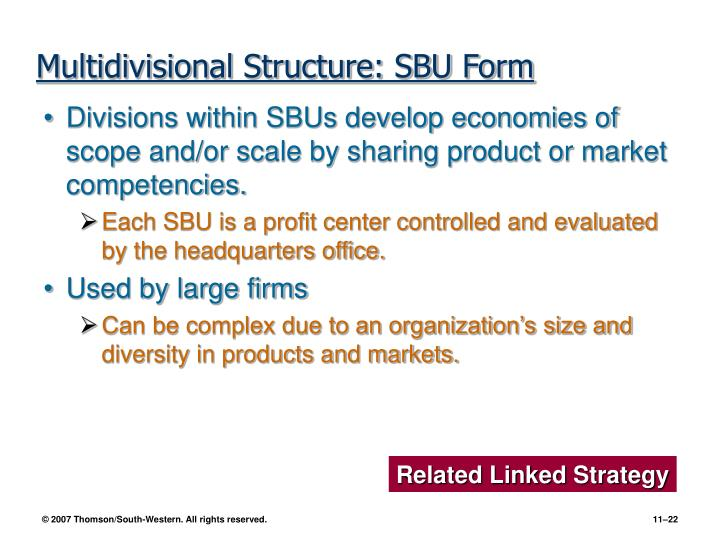 Multidivisional Structure: SBU Form