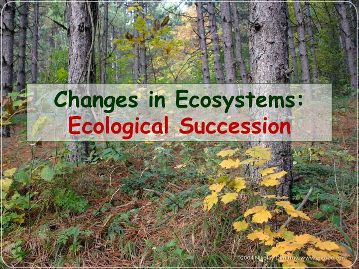 Changes in ecosystems ecological succession l.jpg