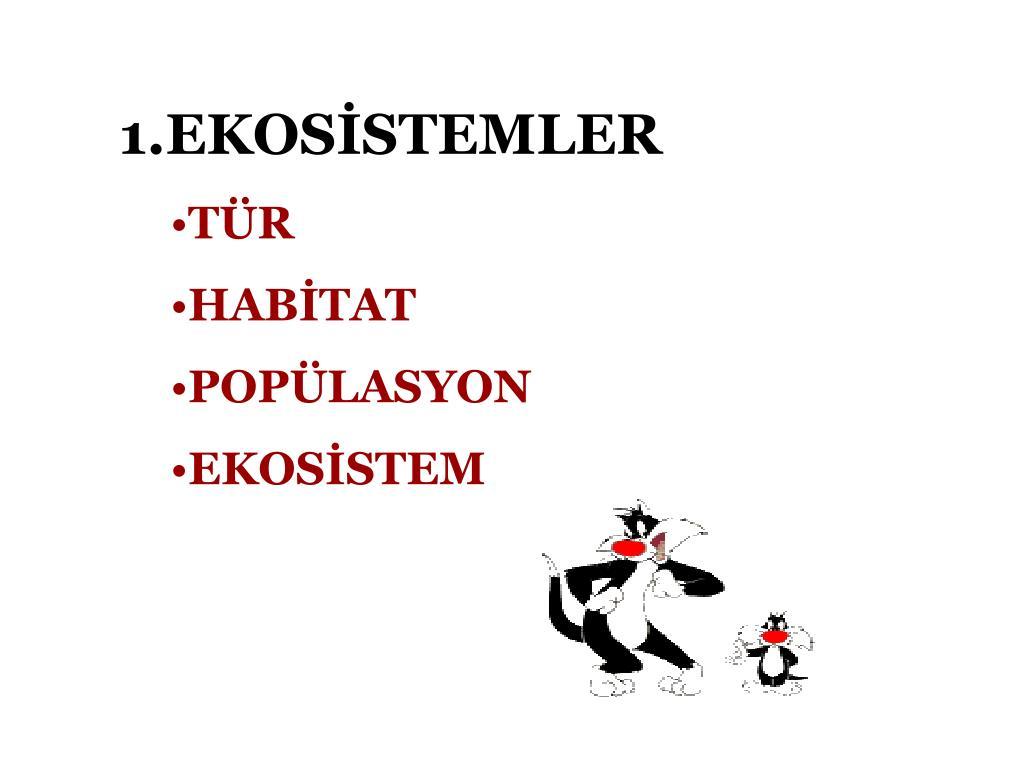 1.EKOSİSTEMLER