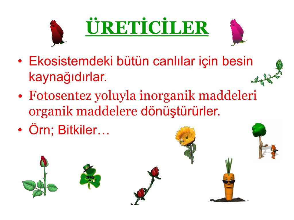 ÜRETİCİLER