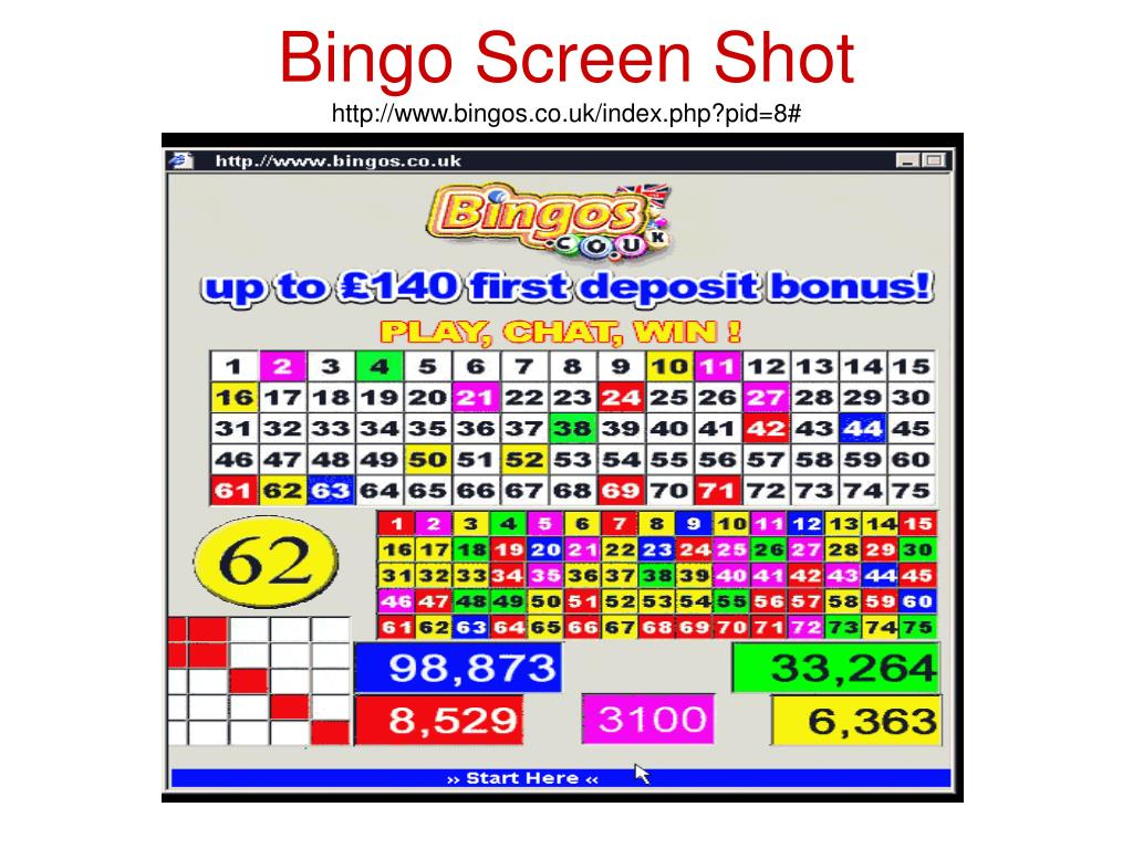 Bingo Screen Shot