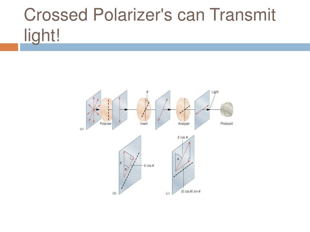 Crossed Polarizer's can Transmit light!