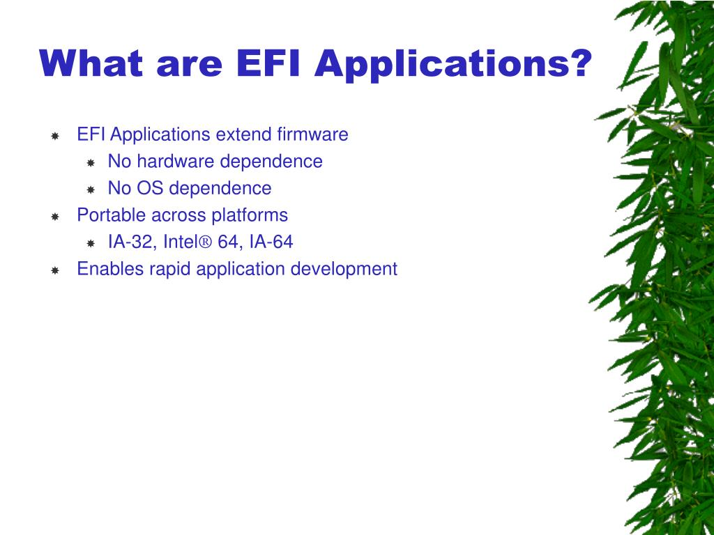What are EFI Applications?