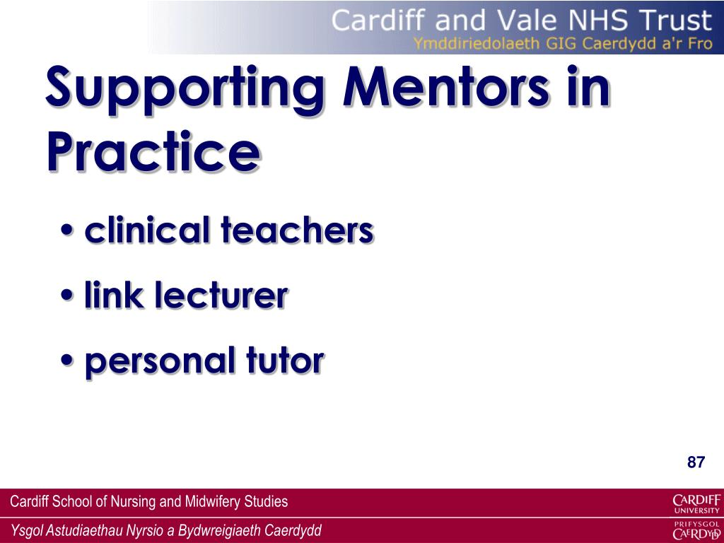 Supporting Mentors in Practice