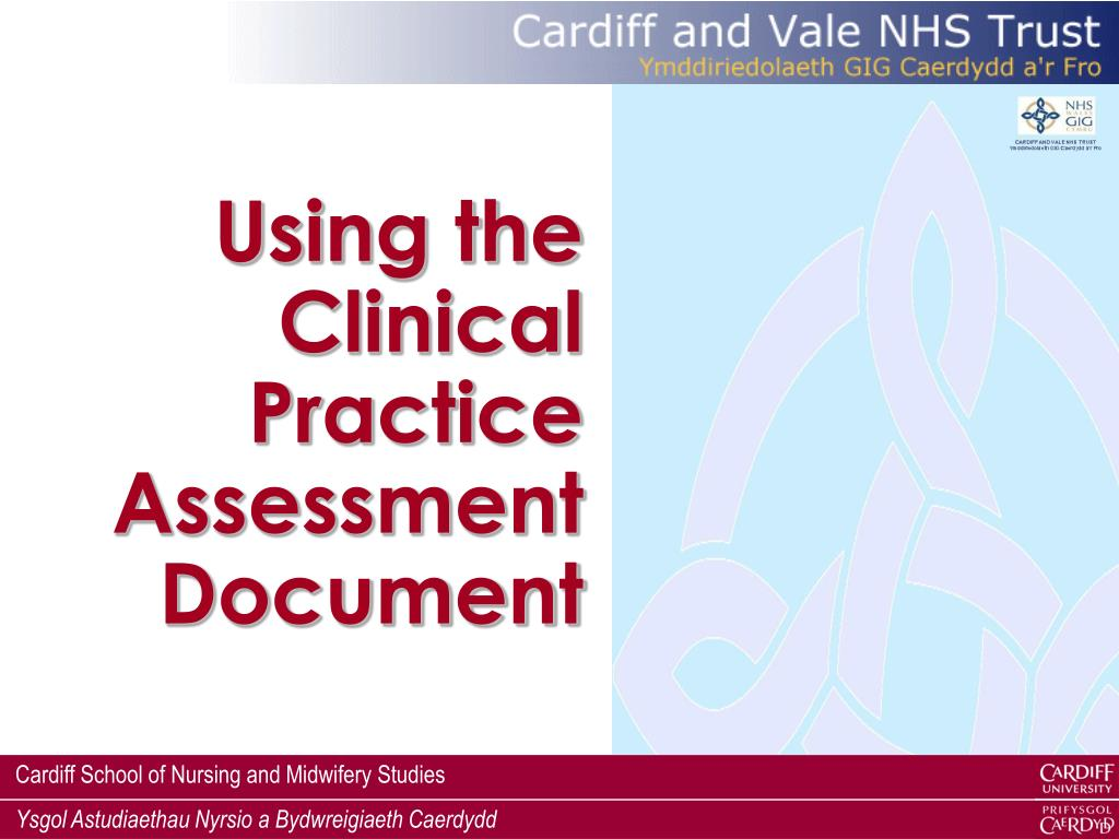 Using the Clinical Practice Assessment Document