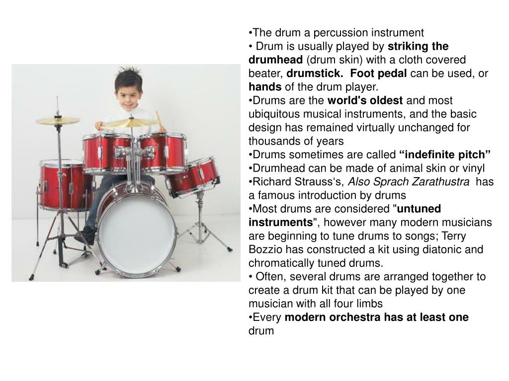 The drum a percussion instrument