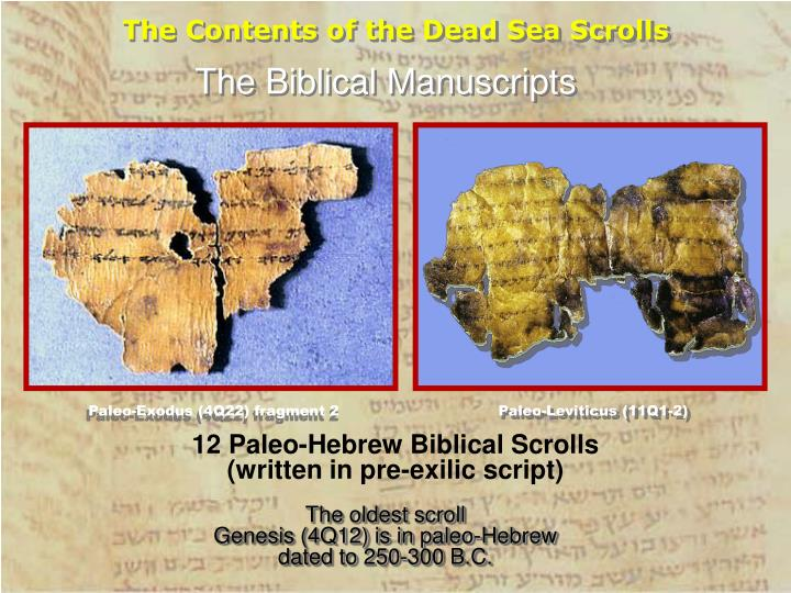 The Contents of the Dead Sea Scrolls