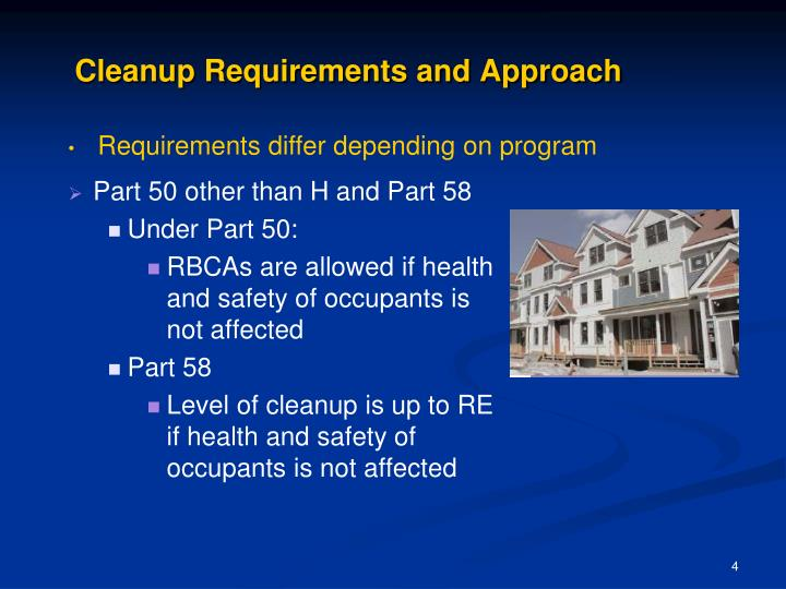 Cleanup Requirements and Approach