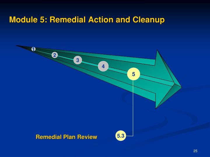 Module 5: Remedial Action and Cleanup