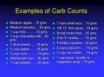 examples of carb counts