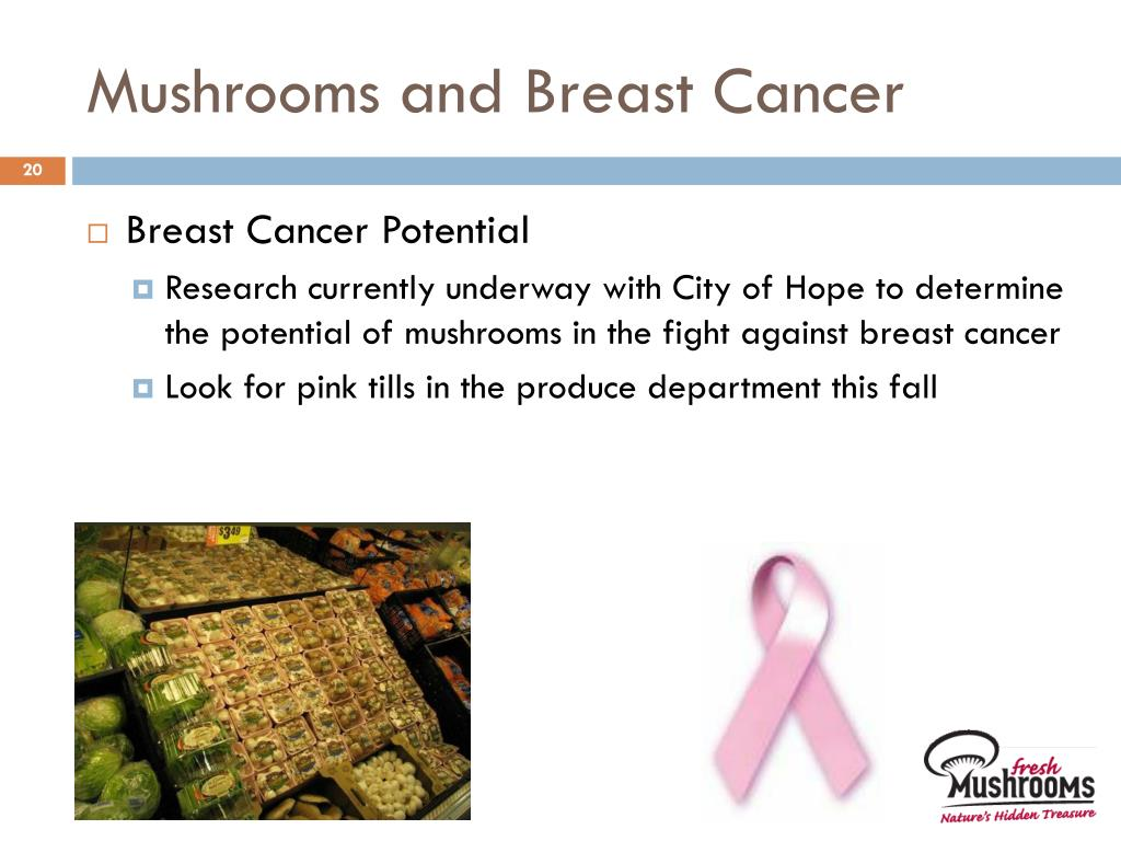 Mushrooms and Breast Cancer