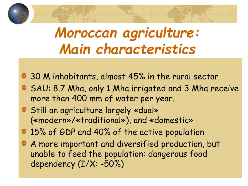 Moroccan agriculture: