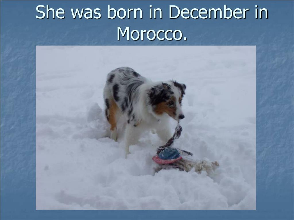She was born in December in Morocco.