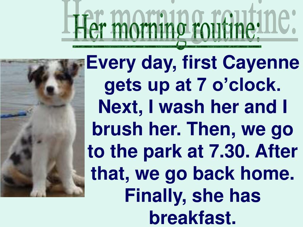 Her morning routine: