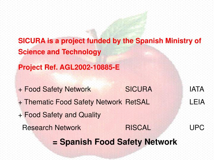 SICURA is a project funded by the Spanish Ministry of Science and Technology
