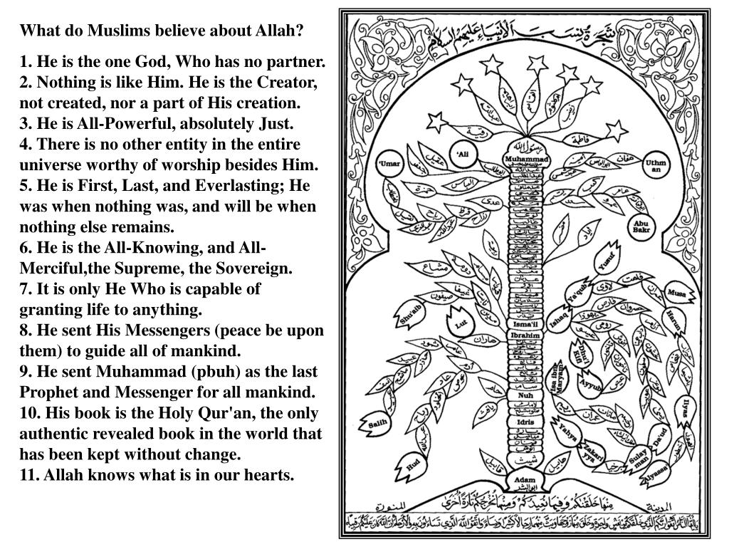 What do Muslims believe about Allah?