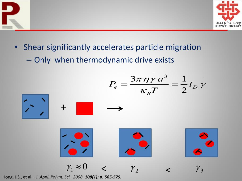 Shear significantly accelerates particle migration