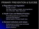 primary prevention suicide