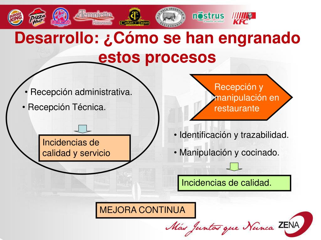 Desarrollo: ¿Cómo se han engranado estos procesos