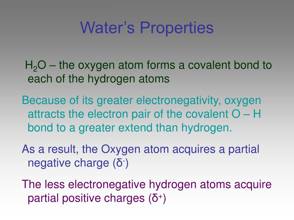 Water's Properties