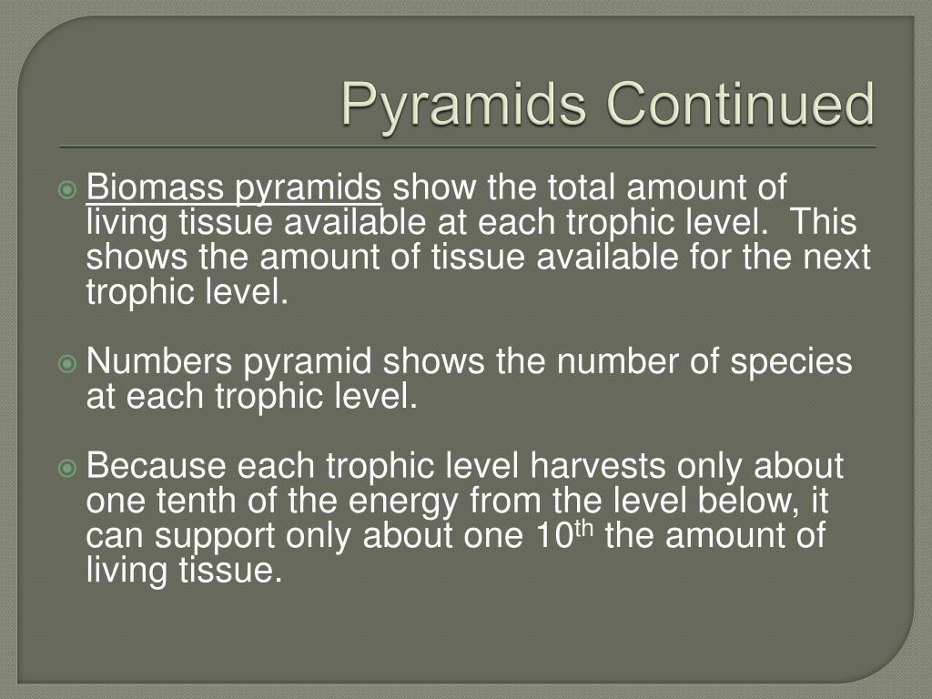 Pyramids Continued