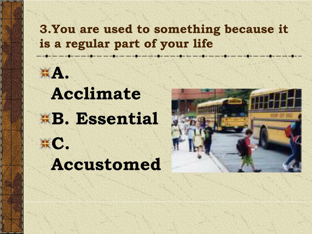 3.You are used to something because it is a regular part of your life