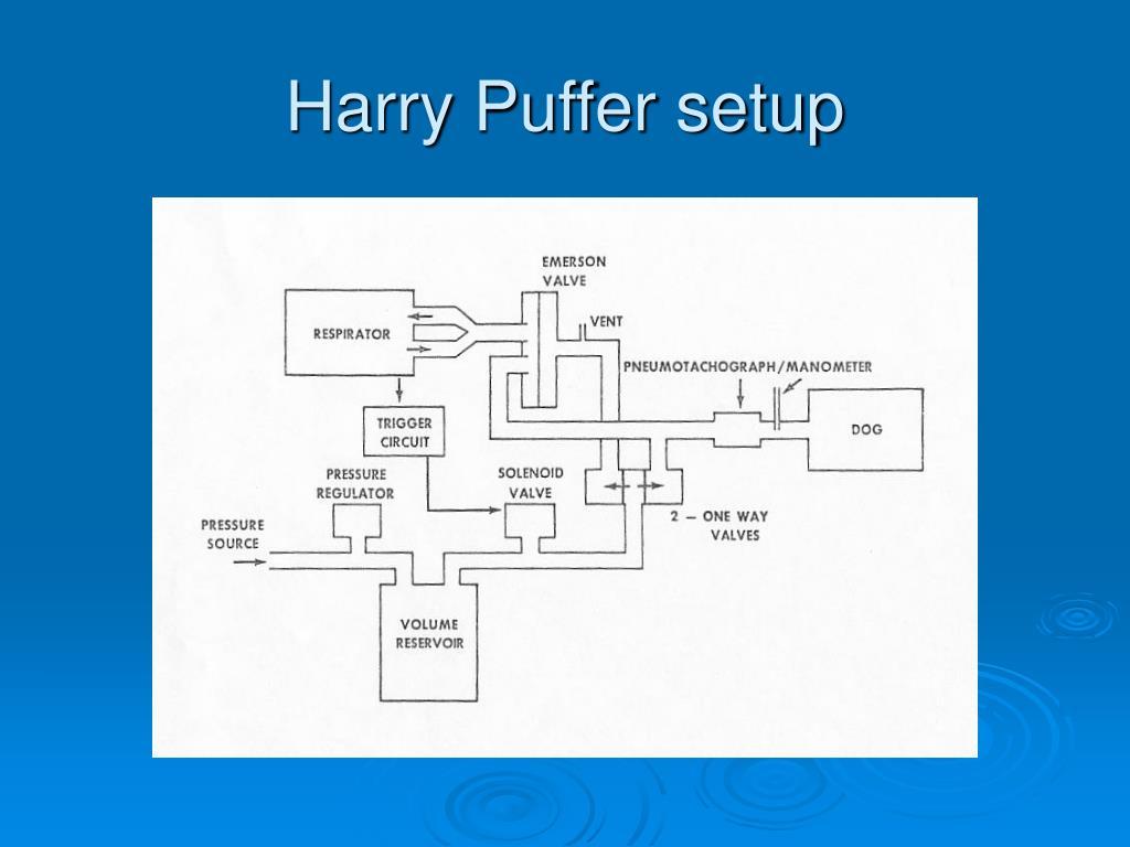 Harry Puffer setup