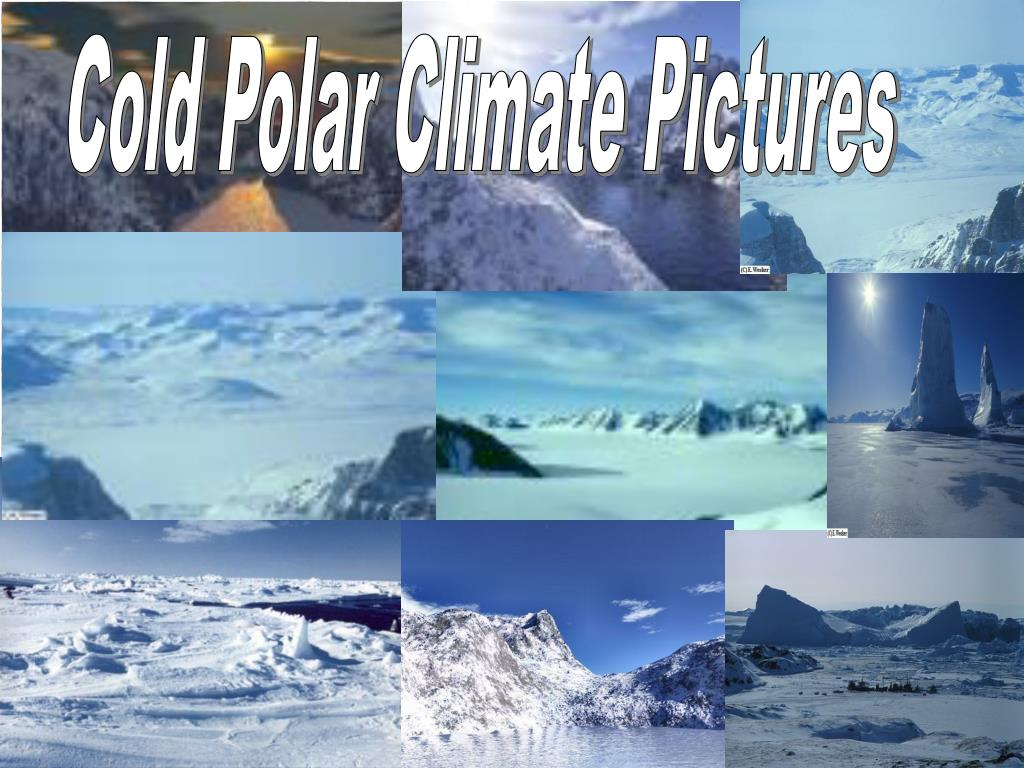 Cold Polar Climate Pictures