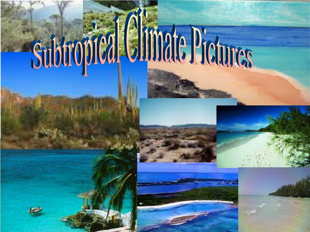 Subtropical Climate Pictures